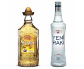 Absinthe, Gin, Anijs