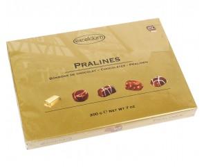 Excelcium Pralines