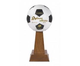 Debowa Football Cup